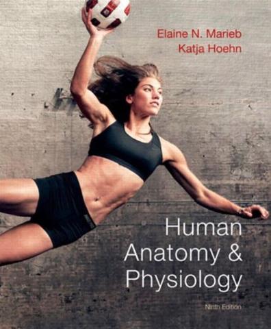 Physiology ebook human silverthorn