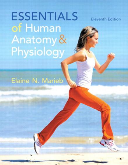 human physiology silverthorn 7th edition pdf free
